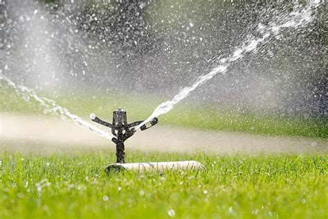 water sprinkler how much water is your sprinkler wasting kuer