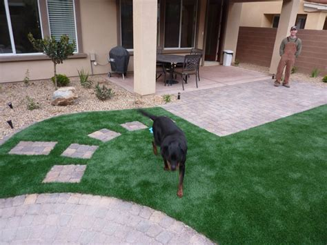 do dogs need grass backyard las vegas artificial turf synthetic grass lawns and eco