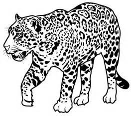 Jaguars Colors Image Gallery Jaguar Coloring Pages