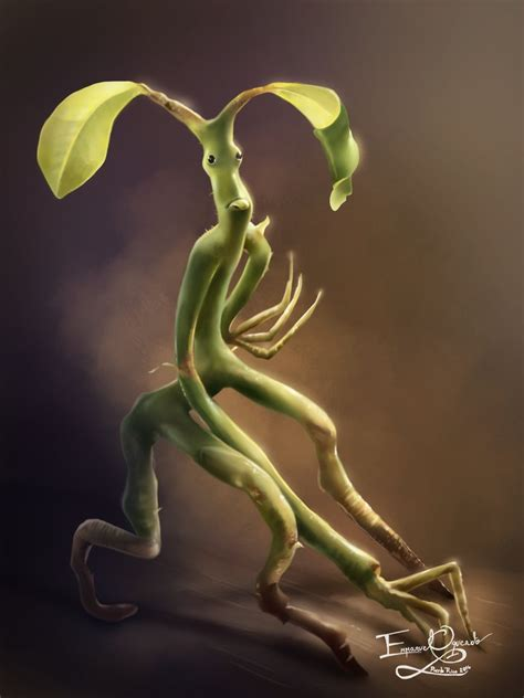 pickett the bowtruckle by emmanuel oquendo on deviantart