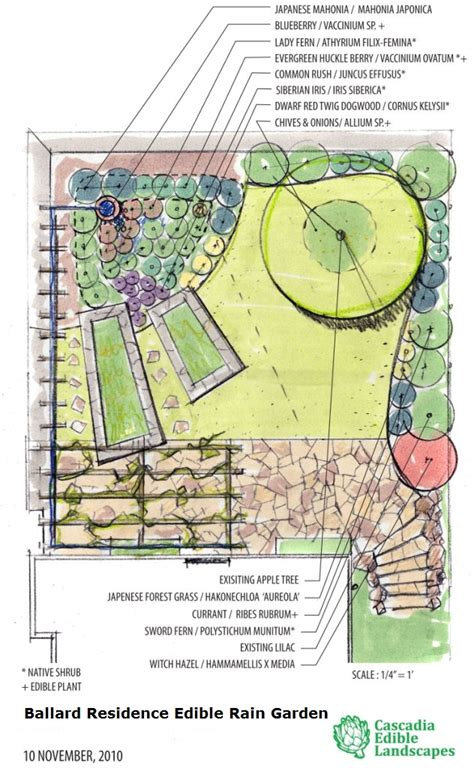 consultation design cascadia edible landscapes
