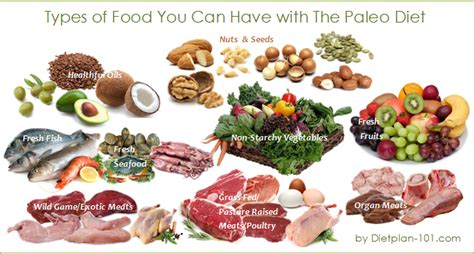 vegetables on paleo diet what foods can you with the paleo diet diet plan