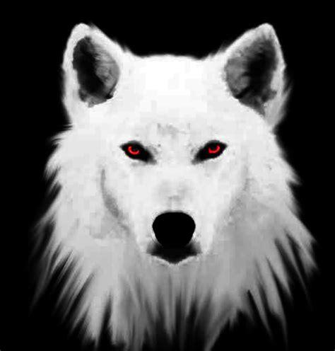 5 11 Black Wolf Blue 16010 re rpg 44