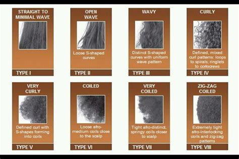 Type Of Hair by Koily Kurly Determining Your Hair Type