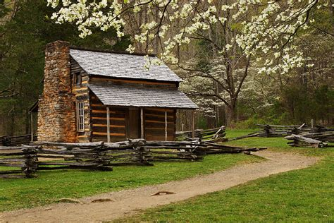 Johns Cabin by Oliver Cabin In Photograph By Deb Cbell