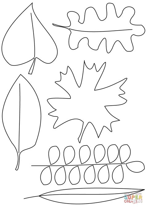 coloring page autumn leaves autumn leaves coloring page free printable coloring pages