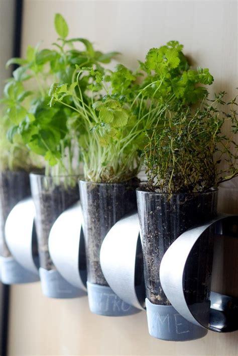 diy indoor herb garden ideas  planters theyre easy