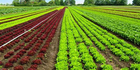 imagenes satelitales para agricultura agricultura quiere concienciar a la sociedad sobre la