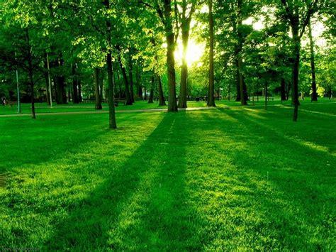 green land green land