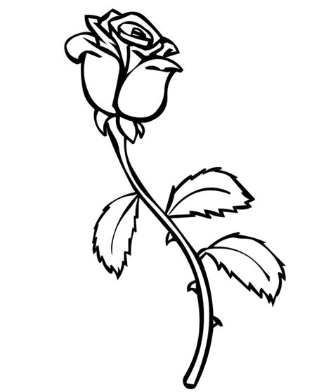 free printable coloring pages of a rose free printable roses coloring pages for kids