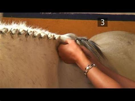 how to braid a horse's mane youtube
