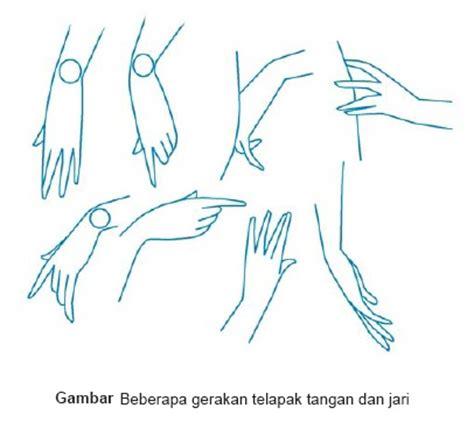 menggambar bagian bagian tubuh tengku nisa