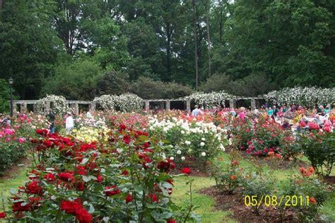 Garden Raleigh Nc by Garden Raleigh Nc Raleigh Nc