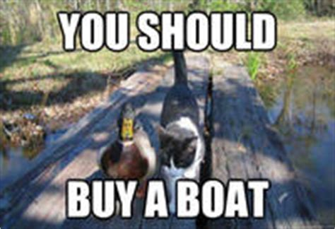 should i buy a duck boat i should buy a boat cat know your meme