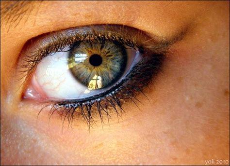 rarest eye color chart best 25 eye colors ideas on