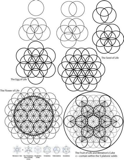 pattern of life meaning 15 pins zu blume des lebens die man gesehen haben muss
