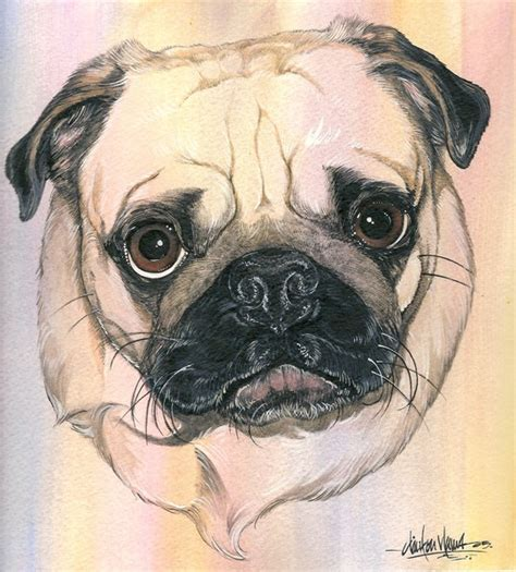 jabba the pug jabba by clinton yaws artwanted