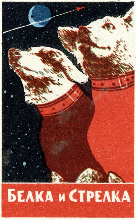 soviet space dogs graphics posters of soviet space dogs