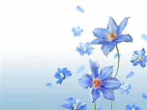 Modre Obr 225 Zky Na Plochu Obr 225 Zky Zv 237 At Zv 237 Ata Kvetiny Blede