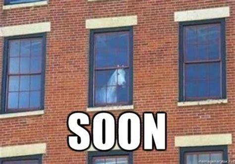 Soon Horse Meme - funny horse memes 05