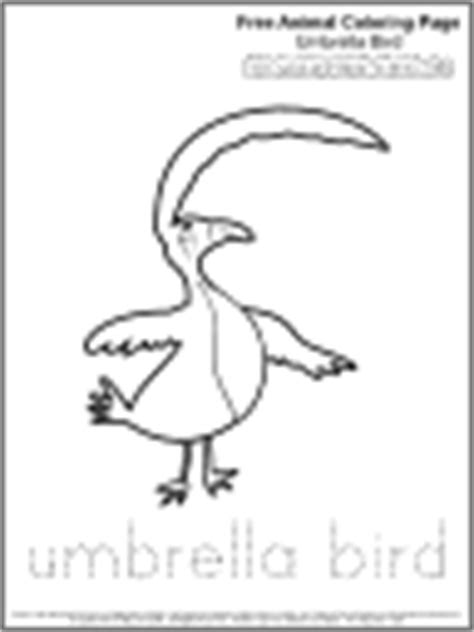 umbrella bird coloring pages coloring pages