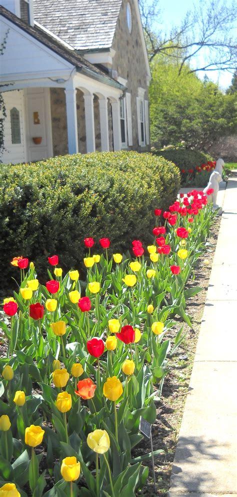Botanical Gardens Milwaukee Botanical Gardens Milwaukee Wedding Cool Luxury Botanical Gardens Milwaukee Wedding My