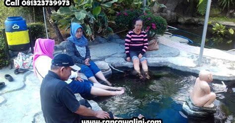 wisata tiket io air panas alami walini rancawalini ciwidey bandung kolam terapi ikan di walini wisata tiket io air panas