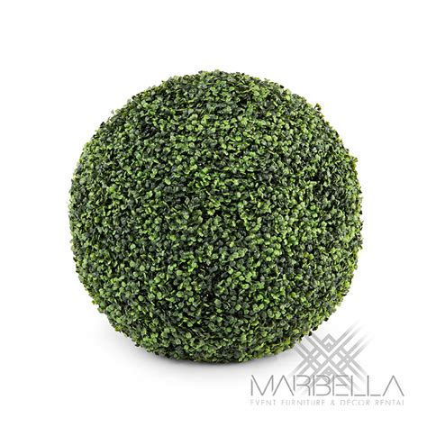 topiary sphere topiary boxwood sphere marbella event furniture and