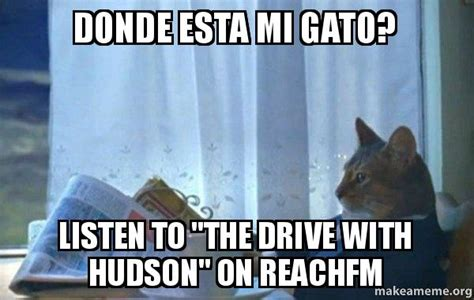 Sophisticated Cat Meme Generator - donde esta mi gato listen to quot the drive with hudson quot on