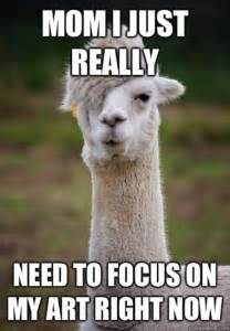 Llama Memes - the best llama drama memes on the internet