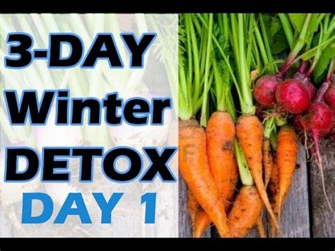 Goop 3 Day Winter Detox by 3 Day Winter Detox Day 1 Jovanka Ciares