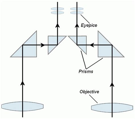 binocular parts diagram a guide to binoculars part 1 the basics