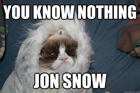 Grumpy Cat Snow Meme - grumpy cat you know nothing jon snow wonderful