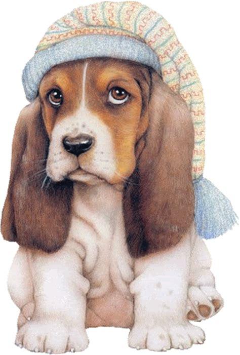 imagenes gif orejas imagenes bonitas de tipos de animales gifs de amor