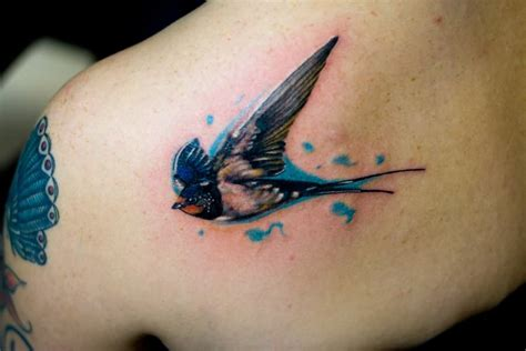 tattoo pictures of birds bird tattoo design gallery meaning ideas
