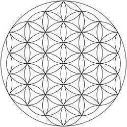 The Life Of A Flower - spirit science 6 the flower of life spirit science