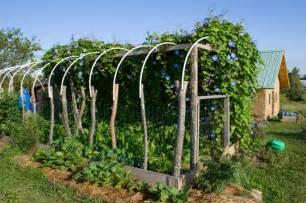 tunnel de jardin la serre pratique et 233 conomique