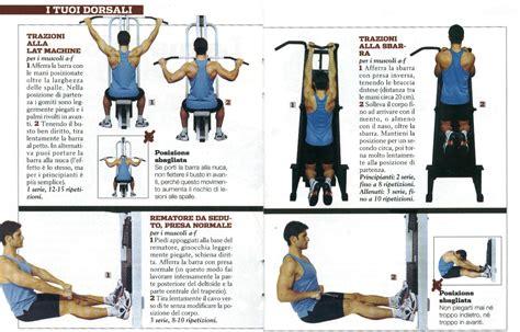 esercizi dorsali casa allenamento pettorali e bicipiti a casa