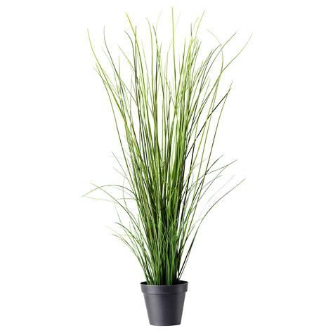 fejka artificial potted plant grass 17 cm ikea