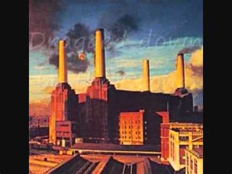 pink floyd dogs lyrics pink floyd dogs w lyrics