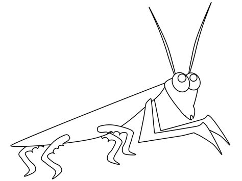 praying mantis coloring page coloring home