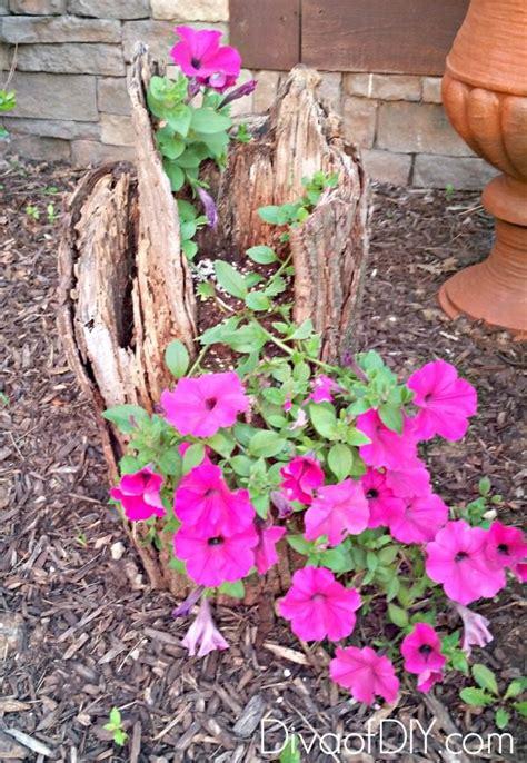 Unique Planters For Flowers by Unique Flower Planter Ideas For Flowers And Succulents