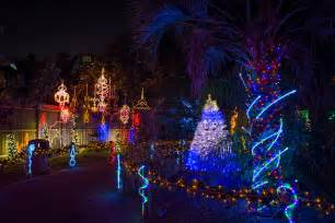 zoo lights is back at the houston zoo with 2 million