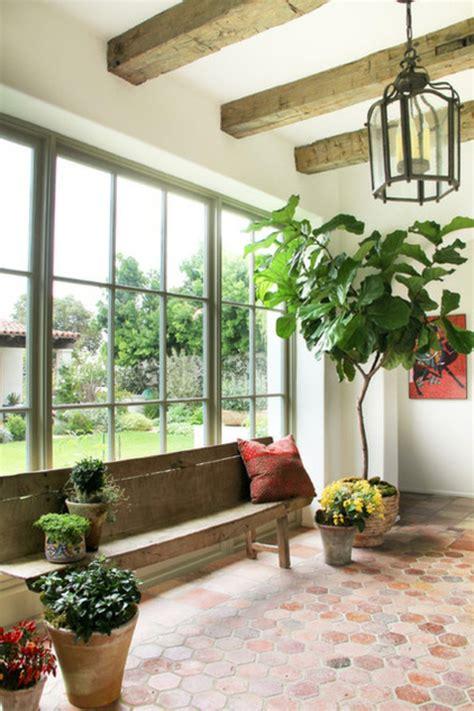 Elegant Livingroom eine pflanze als dekoration geigen feige f 252 r eine belebte