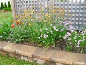 Planting A Perennial Flower Garden Geum Perennial Flowers For Your Garden