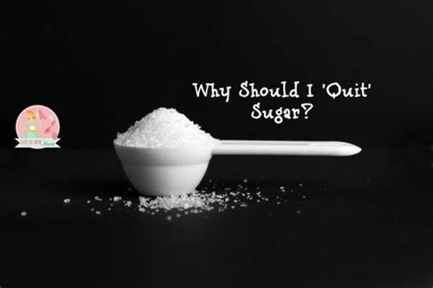 smart sugars sugars that speak why we should listen books why should i quit sugar stay at home