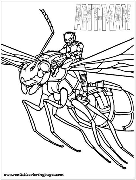 lego ant man coloring pages free coloring pages of ant man