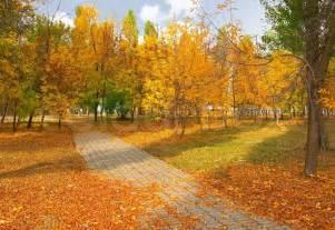 Free Pergola Plans by Autumn Weather Landscape Stock Photo Colourbox