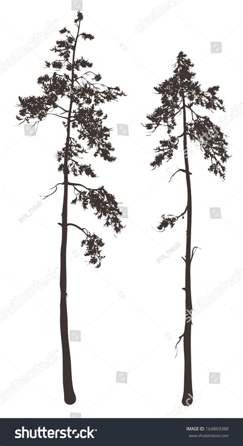 1000 images about painting inspiration pine trees on