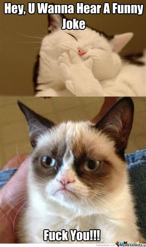Dat Ass Cat Meme - grumpy cat joke by recyclebin meme center